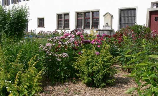 Medizinalgarten